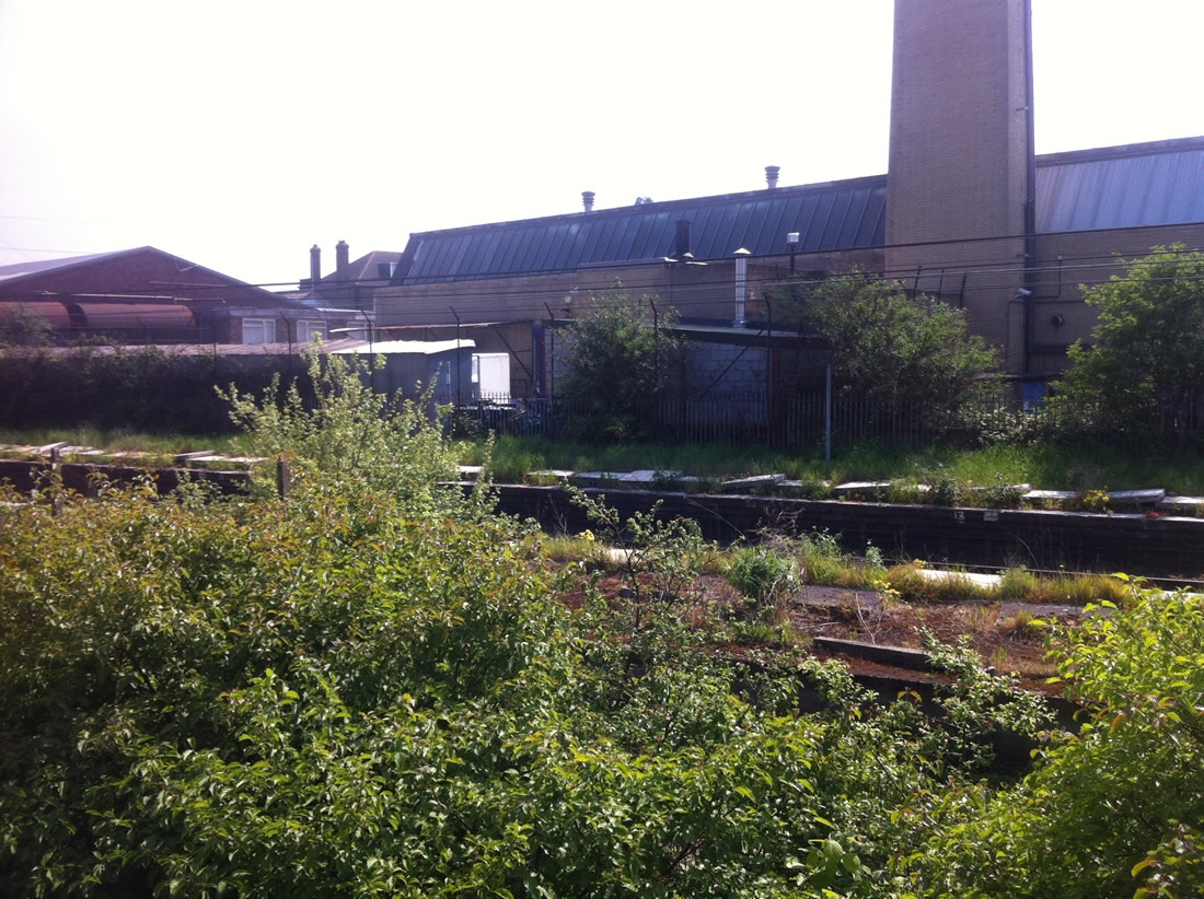 lea_bridge_station_platforms_2