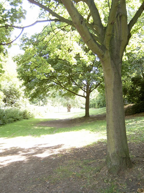Bunchley Gardens to Nunhead